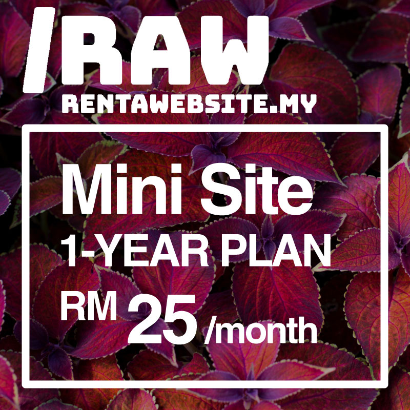 This image has an empty alt attribute; its file name is RAW-Mini-RM25.jpg